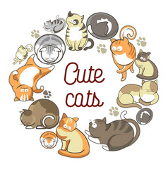 cute cats with fluffy fur that lies in circle vector image