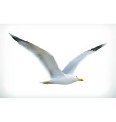 Sea gull icon vector image
