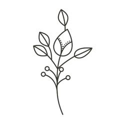 silhouette ramifications flower with stem and vector image