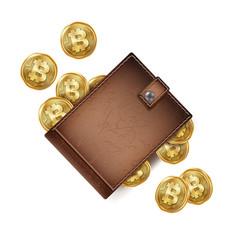 Bitcoin wallet brown color abstract vector