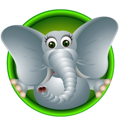 cute elephant head cartoon vector image