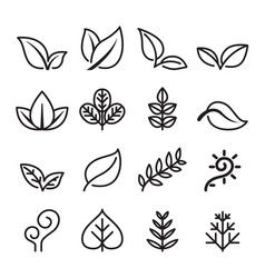 Leaf vegetarian herb icon set in thin line style vector
