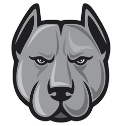 Pit bull head - pit bull terrier vector