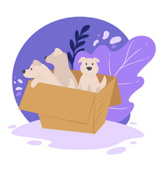 Puppies in carton box shelter for animals vector