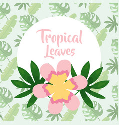 tropical leaves round banner pink flower floral vector image