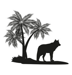 wolf and palm tree black silhouette vector image