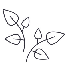leaf branches line icon sign vector image vector image