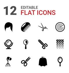 12 hair icons vector