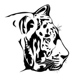 Bengal tiger portrait vector