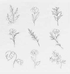 Botanic line art flowers minimal abstract vector