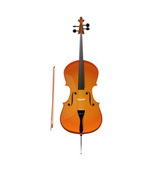 cello of stringed orchestra music vector image