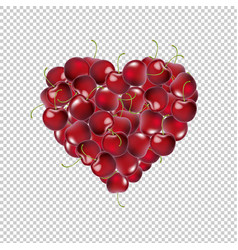 heart from cherry transparent background vector image