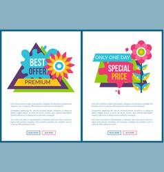 premium best offer advertisement stickers set vector image