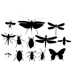 silhouettes set of beetles dragonflies vector image