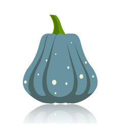 simple flat pumpkin on white glossy surface vector image