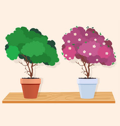 a green tree and a pink blossoming tree vector image vector image