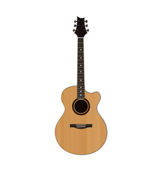 acoustic guitar isolated on white vector image