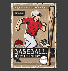 Baseball ball bat player sport game equipment vector