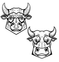 bull heads isolated on white background design vector image