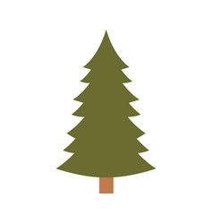christmas pine with trunk colorful silhouette on vector image