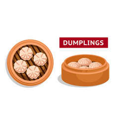 dumplings chinese national dish vector image