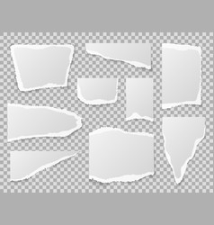 torn paper different shapes papers scraps vector image