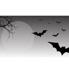 Silhouette of bat halloween vector image vector image