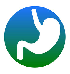 human anatomy stomach white icon in vector image