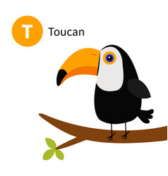 Letter t toucan toco big beak exotic tropical vector