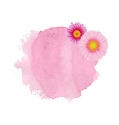 pink stain with gerber vector image