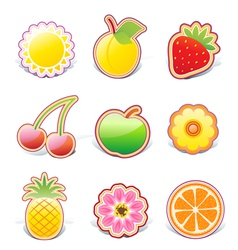 fruity design elements vector image vector image