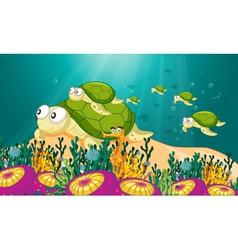 tortoise in water vector image vector image
