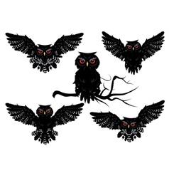 Black Owl vector image