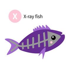 letter x x-ray fish zoo animal alphabet english vector image