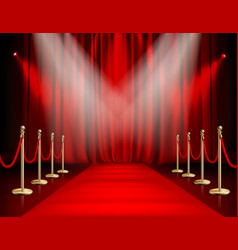 Red carpet with curtain vector