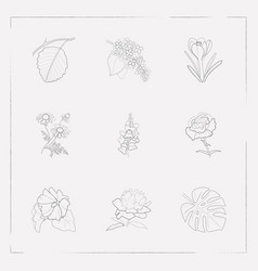 set of botany icons line style symbols with mallow vector image