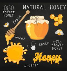 Set of jars with honey vector