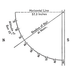 heliotrope vintage vector image