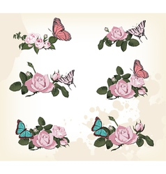 roses with butterflies vector image