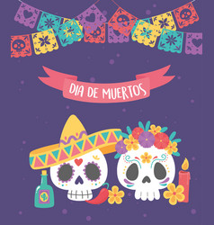 day dead mexican celebration skull vector image