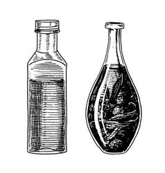 olive oil trees in bottle or jar organic vector image