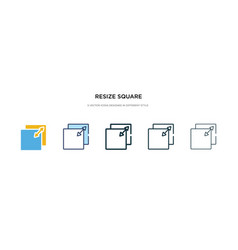 Resize square icon in different style two vector