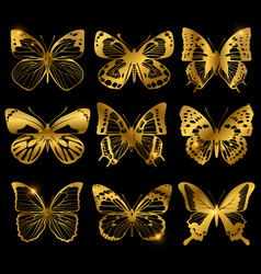 Shiny golden butterflies with light effect vector