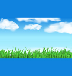 abstract nature landscape back with green grass vector image