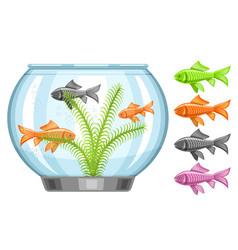 Fish tank vector