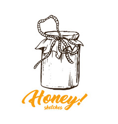 honey sketches glass bottle honey hand drawn vector image