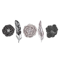 Monochrome detailed bird feathers and flowers vector
