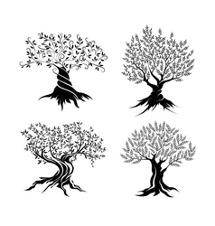 Olive trees silhouette icon set vector