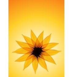 Sunflower on yellow background vector