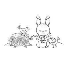 cute animals in field woodland characters vector image